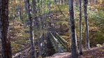 Lake Ouachita Caddo Bend Trail Autumn Bridge