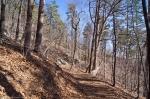 HSNP Goat Rock Trail Winter