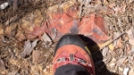 HSNP Goat Rock Trail Boot Camouflage