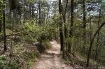 HSNP Peak Trail Spring