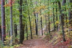 HSNP Hot Springs Mountain Trail Autumn