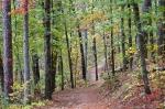 HSNP Hot Springs Mountain Trail Autumn