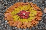 HSNP Hot Springs Mt Trail Autumn Leaves Mandala