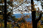 SONY DSCHSNP Gulpha Gorge Trail Autumn Leaves View