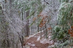HSNP Hot Springs Mt Trail Iced