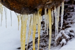 HSNP Hot Springs Mountain Trail Snow Ice Sap Icicles