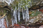 HSNP Peak Trail Spiral Icicles