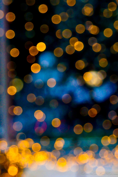 HSNP Holiday Lights Bokeh