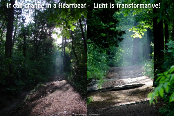 Sunrise Transformation Dead Chief Trail