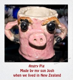 Angry Pig By My Son Josh