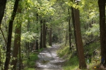 HSNP Hot Springs Mt Trail Spring Rain