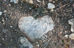 HSNP Floral Trail Heart Rock